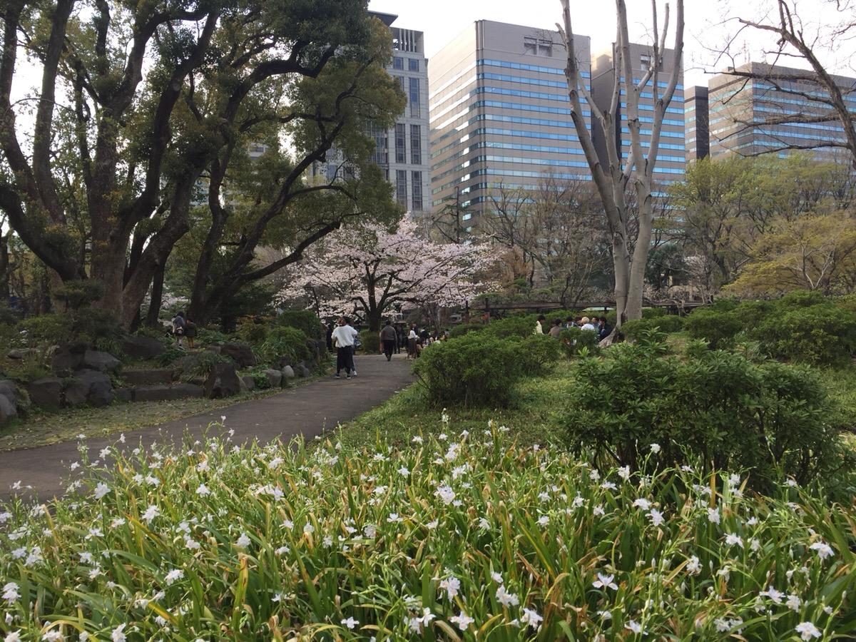 【スタッフブログ】公園をお散歩♪