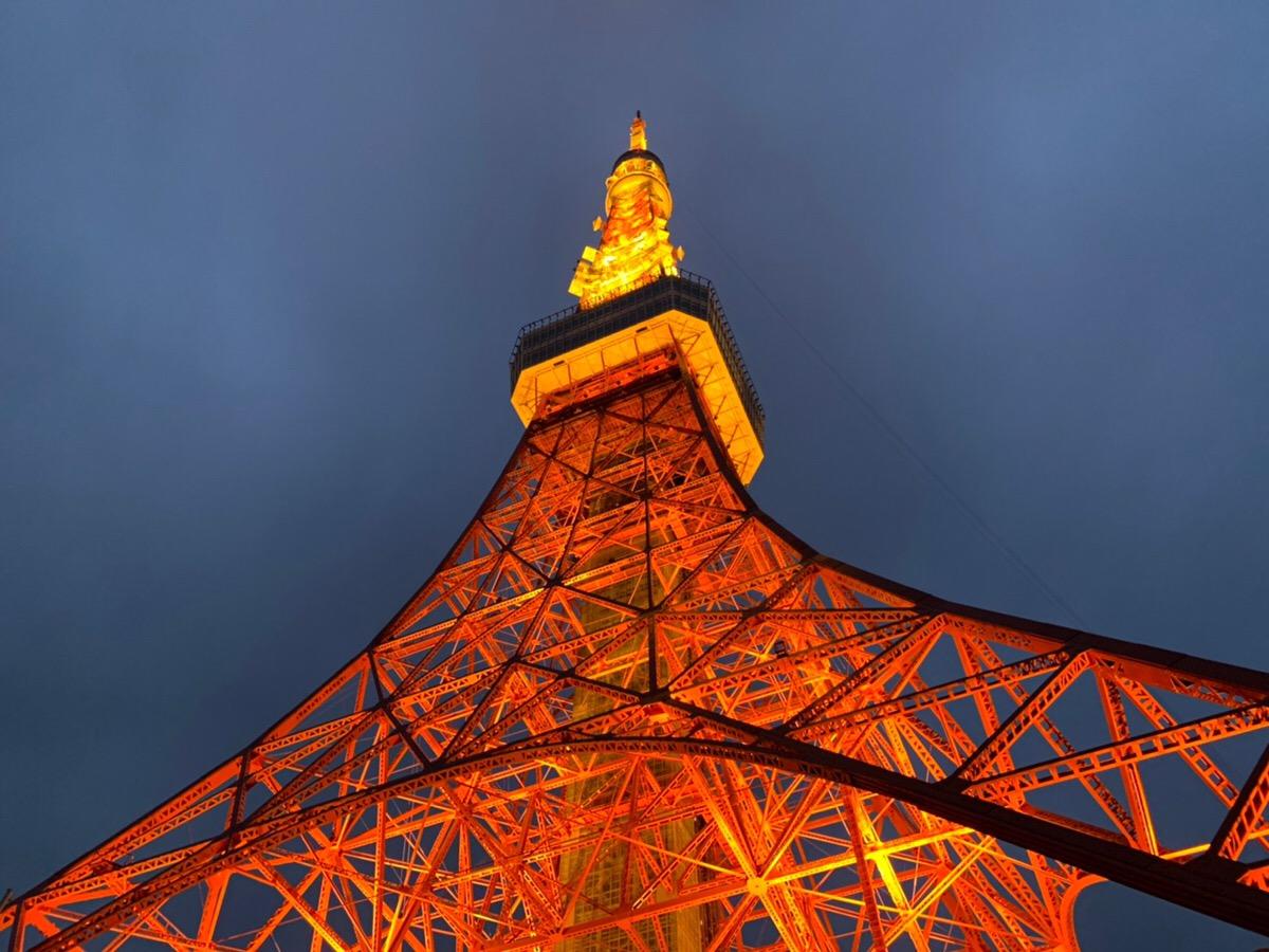 【スタッフブログ】東京タワーとスカイツリーとクリスマスツリー